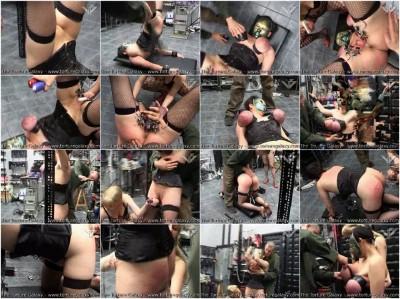Mistress Wants Pain