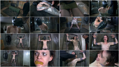 Safe House 2 Part 1 - Hazel Hypnotic