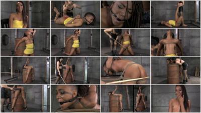 Nikki Darling My Time In The Barrel (2014)