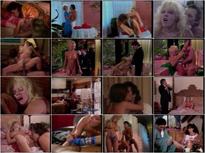 Swedish Erotica 20 (1981)