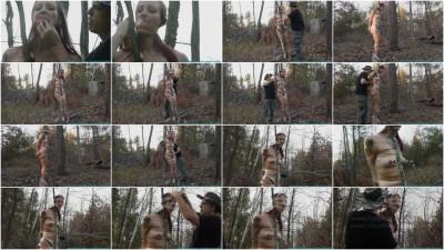 Futile Struggles - Tree Taped