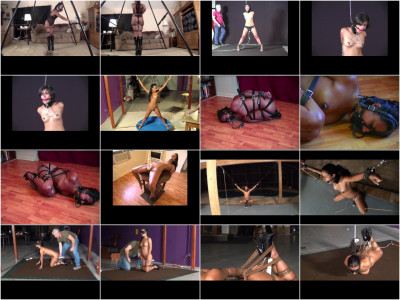 Lew Rubens Video Collection 3