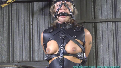 Activist Turns His Attention Towards Adara Movie 3 – The Harness Part 3