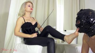 A Worshiping Tongue and A Whip – Mistress Sarah – Full HD 1080p