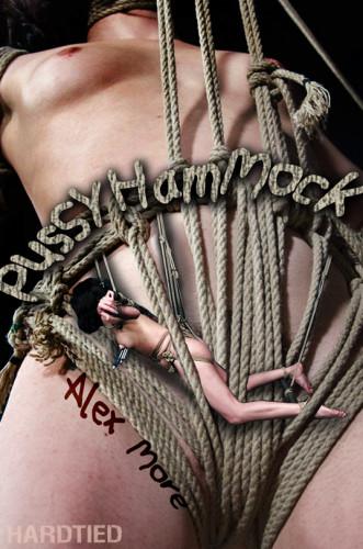 Alex More – Pussy Hammock