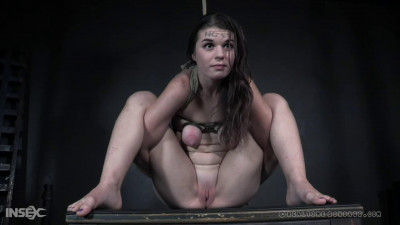 Bondage, torture and domination for two naked bitches part1