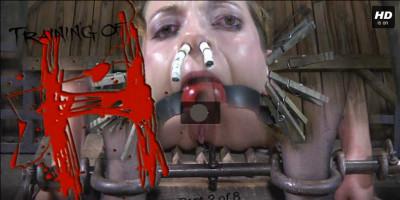 Realtimebondage – Oct 20, 2012 – Training Of H Part 2 – Hazel Hypnotic