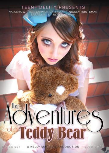 The Adventures of a Teddy Bear (2014)