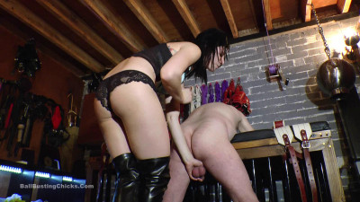 Ballbustingchicks - Pip - Leashed And Bruised