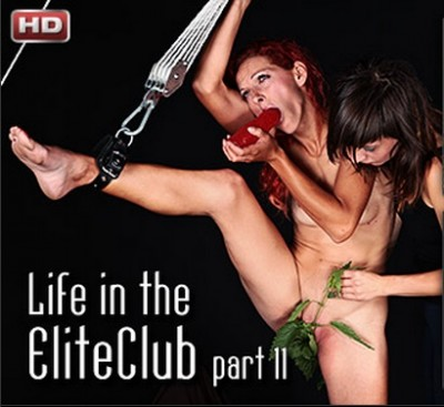Life in the Elite Pain Club 11 (HD)