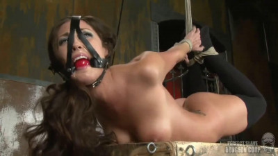 Bondage, spanking, hogtir and torture for sexy model part 1