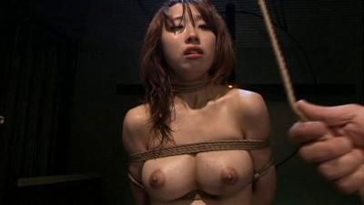 Torture Compilation