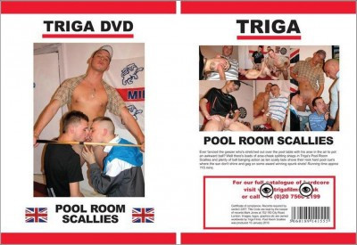 Description Triga Pool Room Scallies