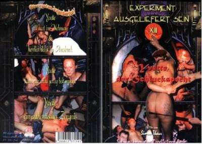 Experiment Ausgeliefert Sein 13