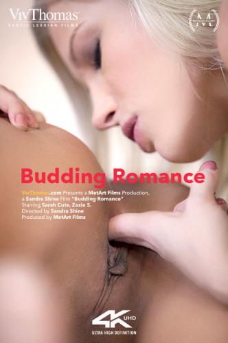 Sarah Cute, Zazie Skymm – Budding Romance (2019)