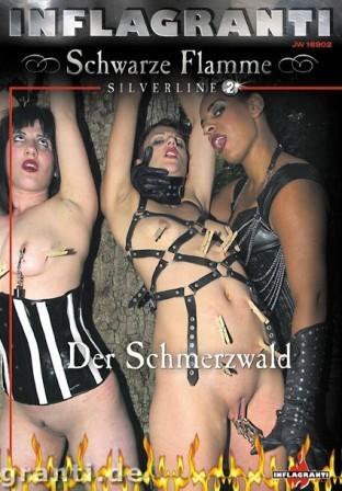 Schwarze Flamme – Silverline 02 – Der Schmerzwald