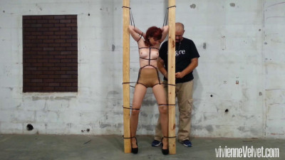 Standing Ziptied to the Poles