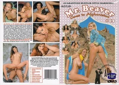 Description Mr. Beaver Checks In vol 13