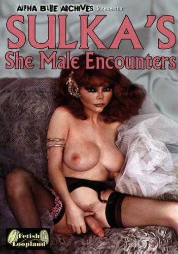 Sulka's She Male Encounters - online, retro, show...