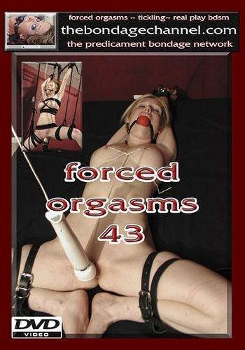 Orgasms 43