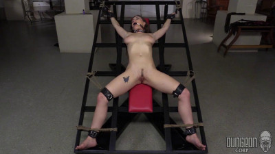 DungeonCorp - SocietySM - 01 May, 2015 - Hard core Beauty on Bottom - Molly Jane