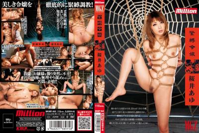 Sakurai Ayu Bondage D. Sakurai Ayu (2015)