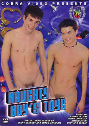 Description Naughty Boys Toys