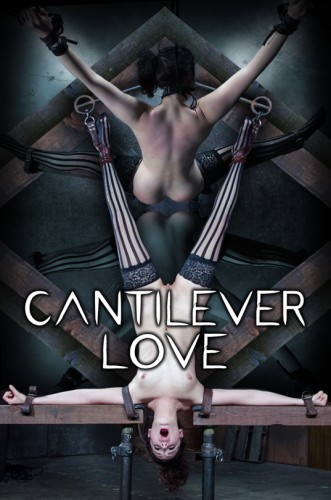 bondage trying bus love (Infernal Restraints - Cantilever Love - Endza Adair).