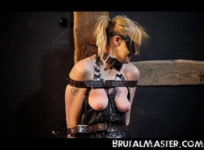 Brutal Master - The Pig - Brutal Punishment