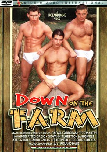 Description Down on the Farm