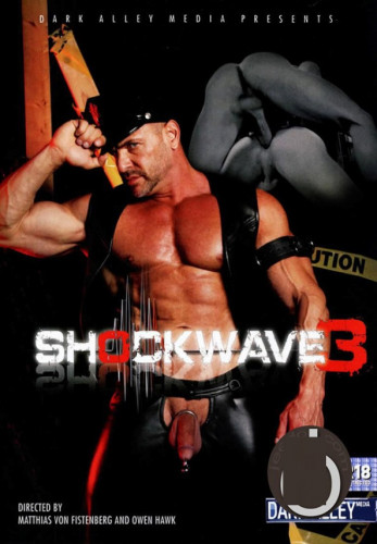 Description Shockwave Part 3 (2011)