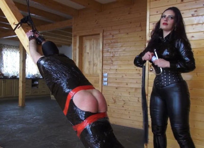 new stud kink - (Mistress Ezada Sinn)
