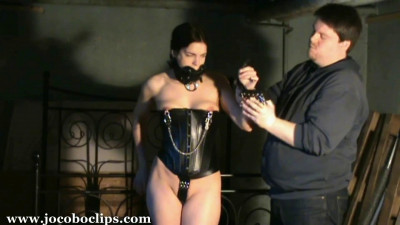 Bound Ponygirl - Part 2 Of 2