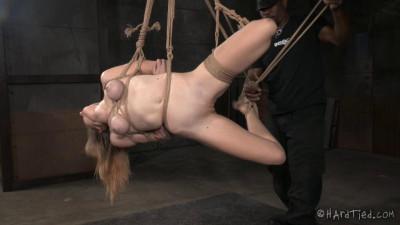 video watch online - (Ashley Lane Return of the Screamer)