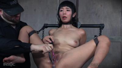 Orgasmageddon Part 3: Denial - Marica Hase