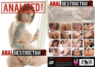 Description Anal Destruction Vol 5