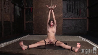 DungeonCorp Pack – 6 Video