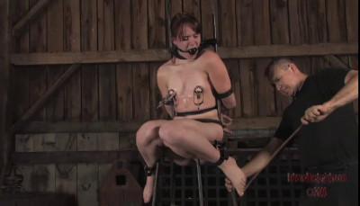 Attention Slut Part 2 - Bronte