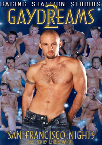 Gay Dreams Vol. 2
