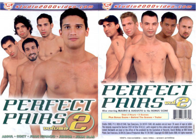 Description Perfect Pairs vol.2