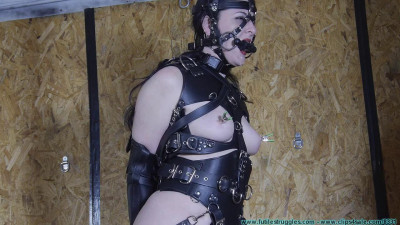 He Wanted a Pony Girl for Christmas 4 part — Extreme, Bondage, Caning
