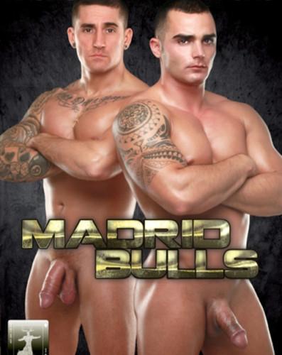 Madrid Bulls