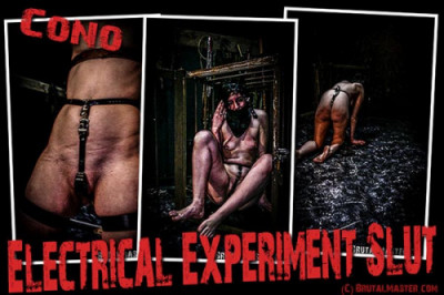 Description BrutalMaster - Electrical Experiment Slut