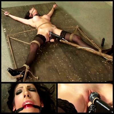 Conditioning Dava (4 Nov 2014) Perfect Slave