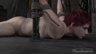 Contorted Claire 2