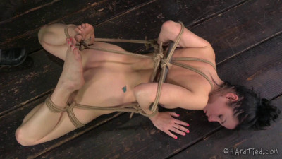HardTied  Veruca James  The Good Little Slave