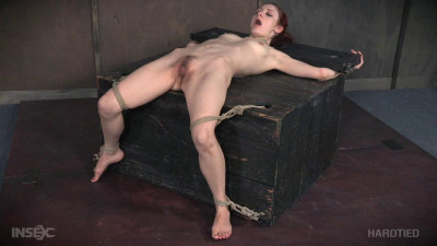 Description HardTied Violet Monroe Whipped Pussy