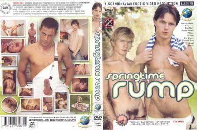 Description Springtime Rump