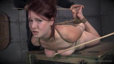 Cunt Puppy Part 2 - Ashley Lane