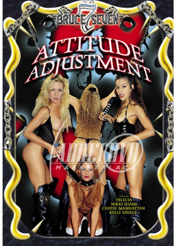 Description Attitude Adjustment